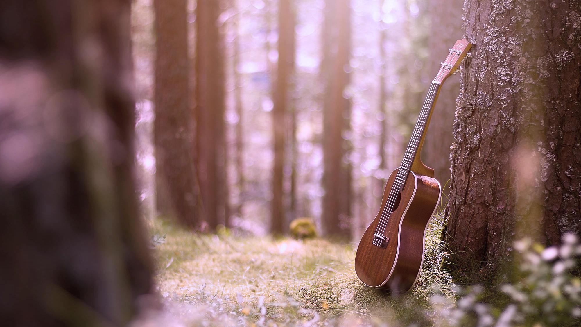 奥尔夫幼儿音乐启蒙教育课程——《
